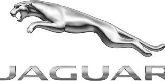 Miami Jaguar